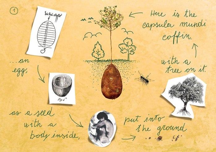biodegradable-burial-pod-memory-forest-capsula-mundi-3