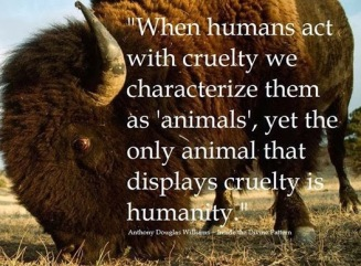 when-humans-act-with-cruelty-we-characterize-them-as-animals-yet-the-only-animal-that-displays-cruelty-is-humanty-animal-quote