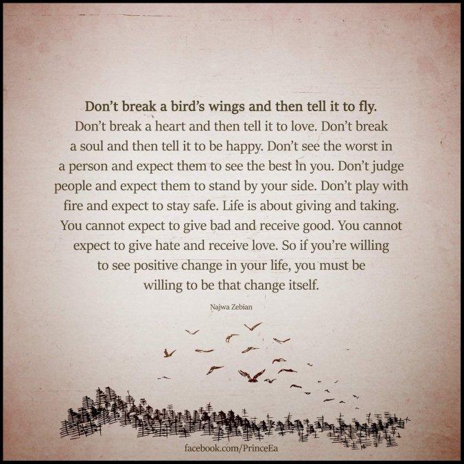 brid fly